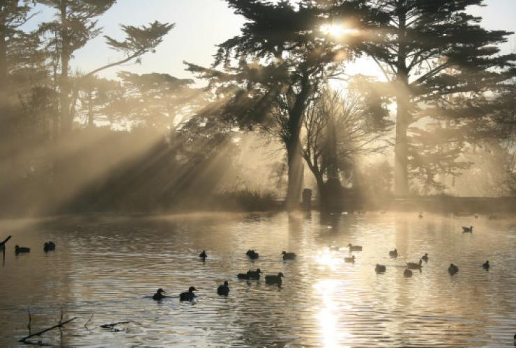 Golden Gate Park Lake Stow