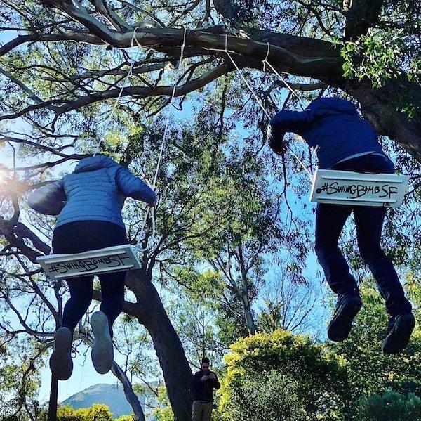 Enjoy Playing Swings On Trees San Francisco Hostels Club